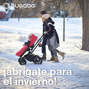 Bugaboo accessories winter